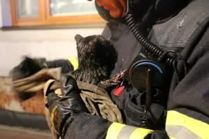 ADHR-hasic-zachranil-kocku